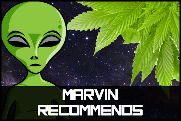 who we recommend